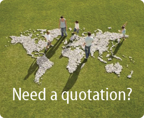 Need A Quotation?